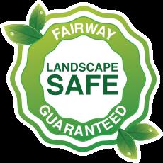 Fairway Safety